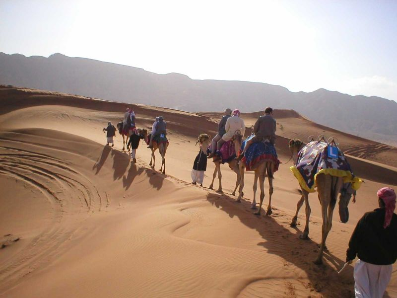 Desert Tour of Rajasthan