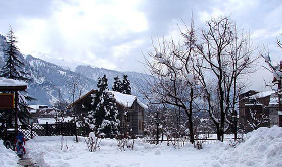 Manali Tour Package by Volvo bus with 2* Hotels